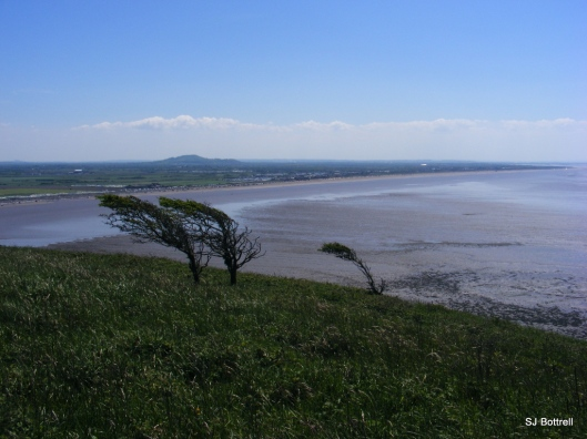 View south towards Brean