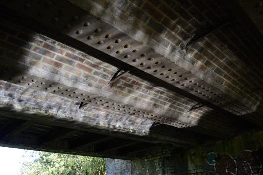 Reflecting Sunlight Under Railway Bridge