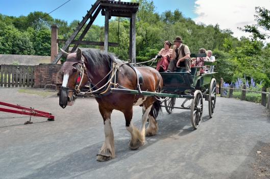 Eco-Friendly Transport