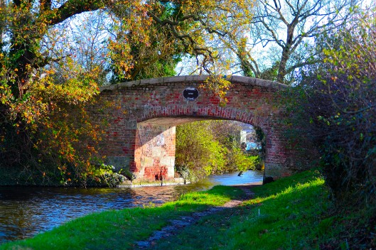 Brick Bridge over Staffordshire & Worcestershire Canal