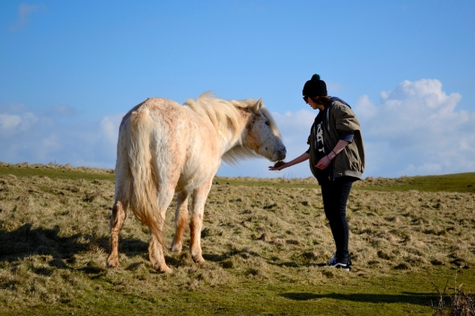 Lauren feeding horse