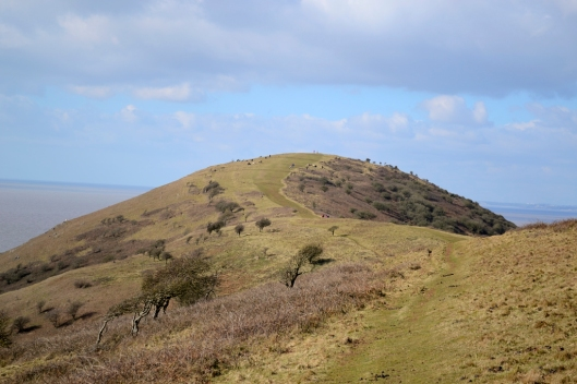 looking along the ridge on Brean Down